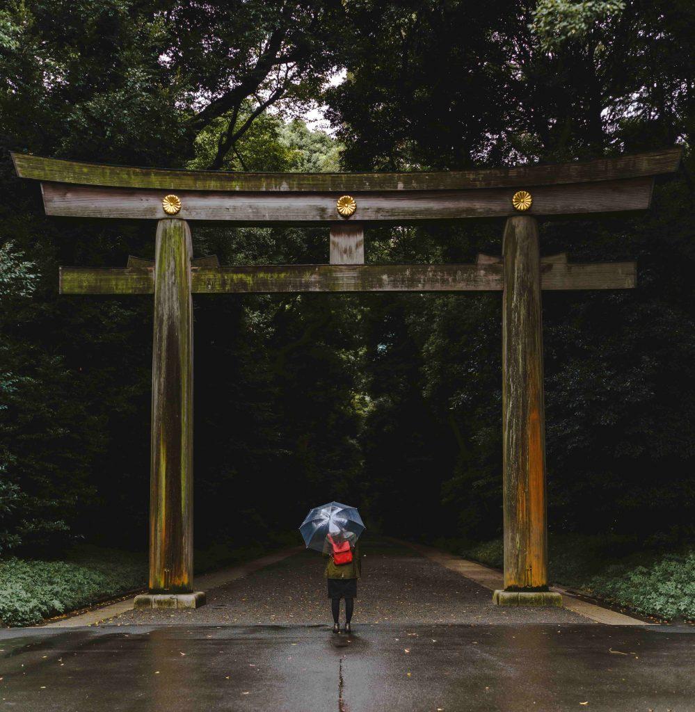 Un tori sous la pluie à Tokyo
