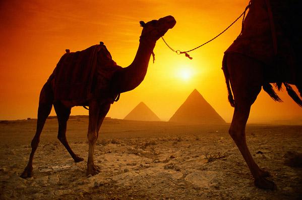 Visiter l'Egypte, pays des Pharaons
