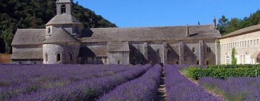 Le sud de la France : une valeur sûre
