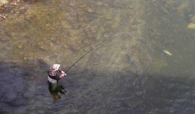 La pêche au toc : une idée d'activité nature pour vos vacances !