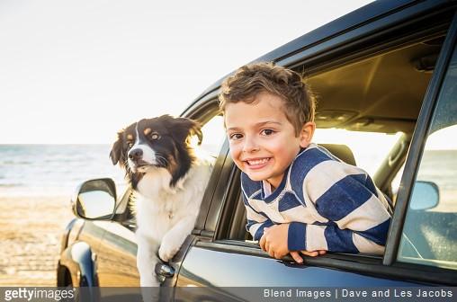 Partir en vacances avec son chat ou son chien : comment s'y préparer ?