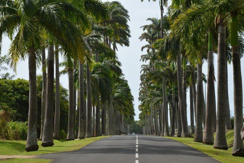Où aller en Guadeloupe?